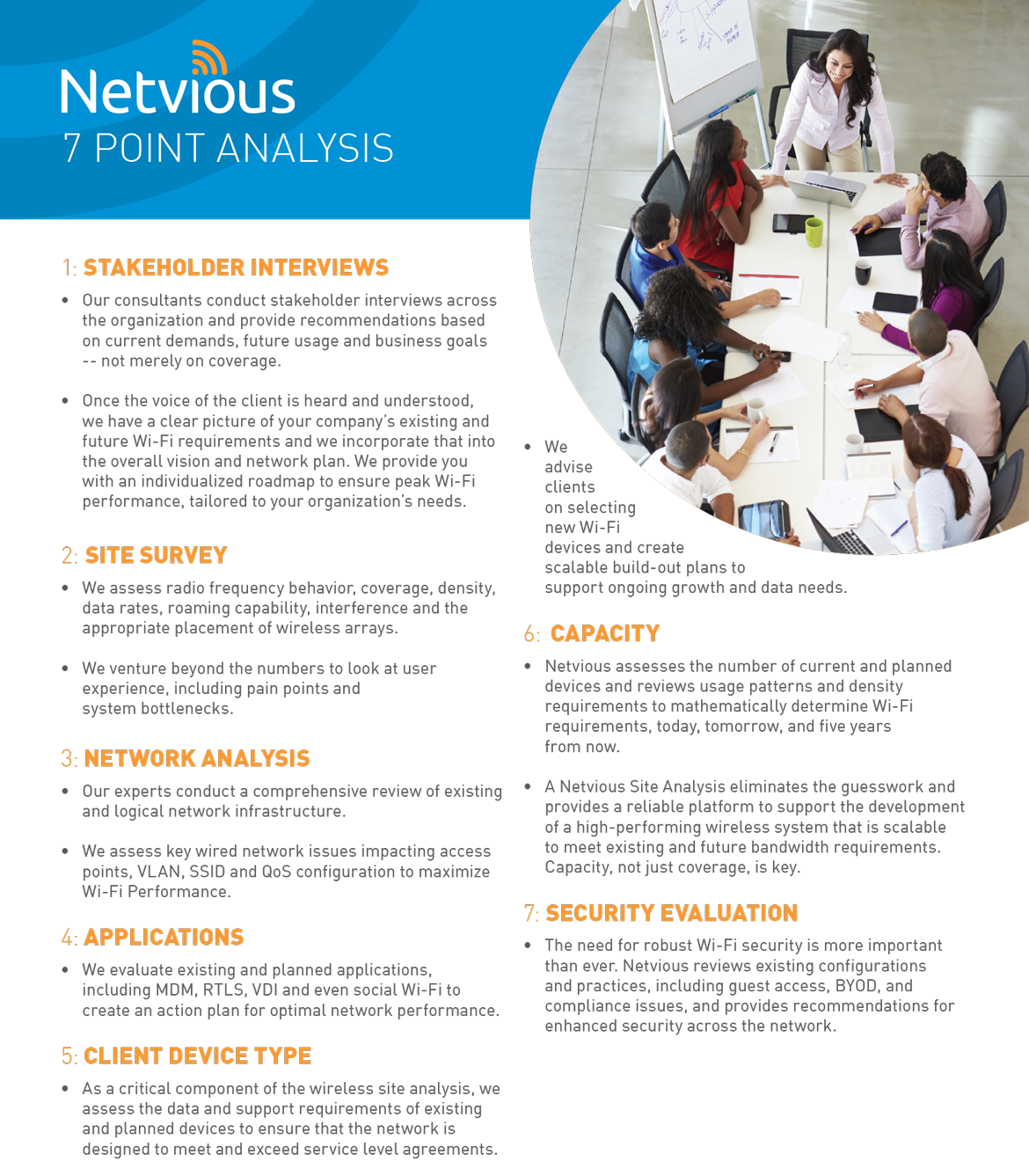 Netvious-SiteAnalysis-flyer-2